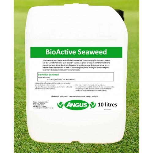 BioActive Seaweed